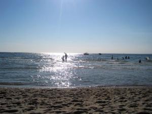 People in ocean with sun behind
