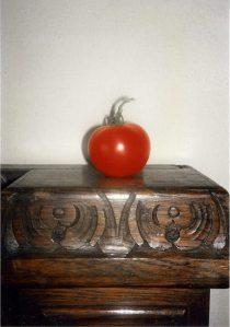 Tomato on a pedestal