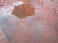 Reflection of clouds and umbrella in wet brick patio