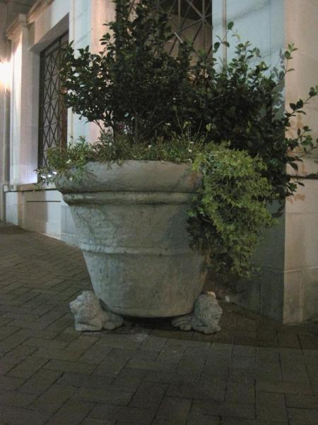 Elegant street pot in Savannah, Georgia
