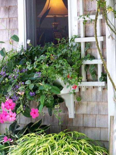 Cape Cod Window, Massachusetts - photo by Alicja Mann