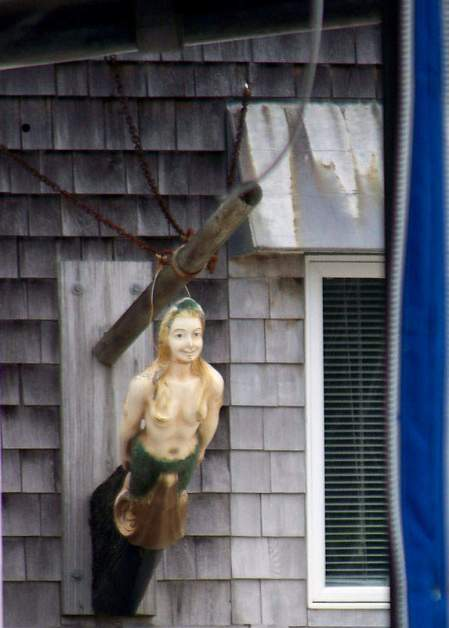 Mermaid watching - Cape Cod, Massachusetts - photo by Alicja Mann