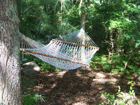 Matt's Hammock - Cape Cod, Massachusetts - photo by Alicja Mann