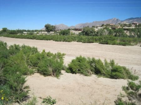 Rillito River, Tucson, Arizona