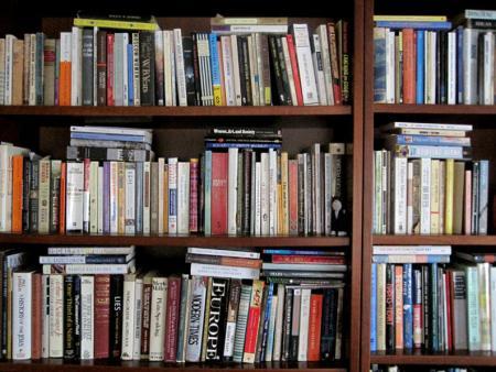 Books on bookshelves Copyright (c) 2011 by Alicja Mann