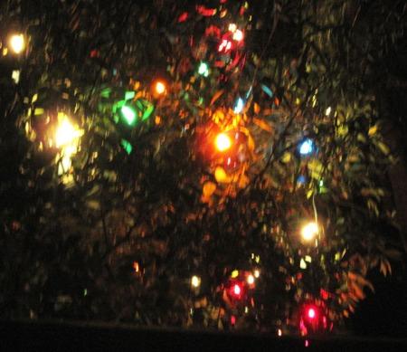 11) Joes Lights