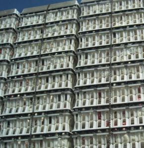 Layers of white containers with chickens (layers)