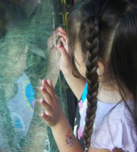 Girl looking into glass window